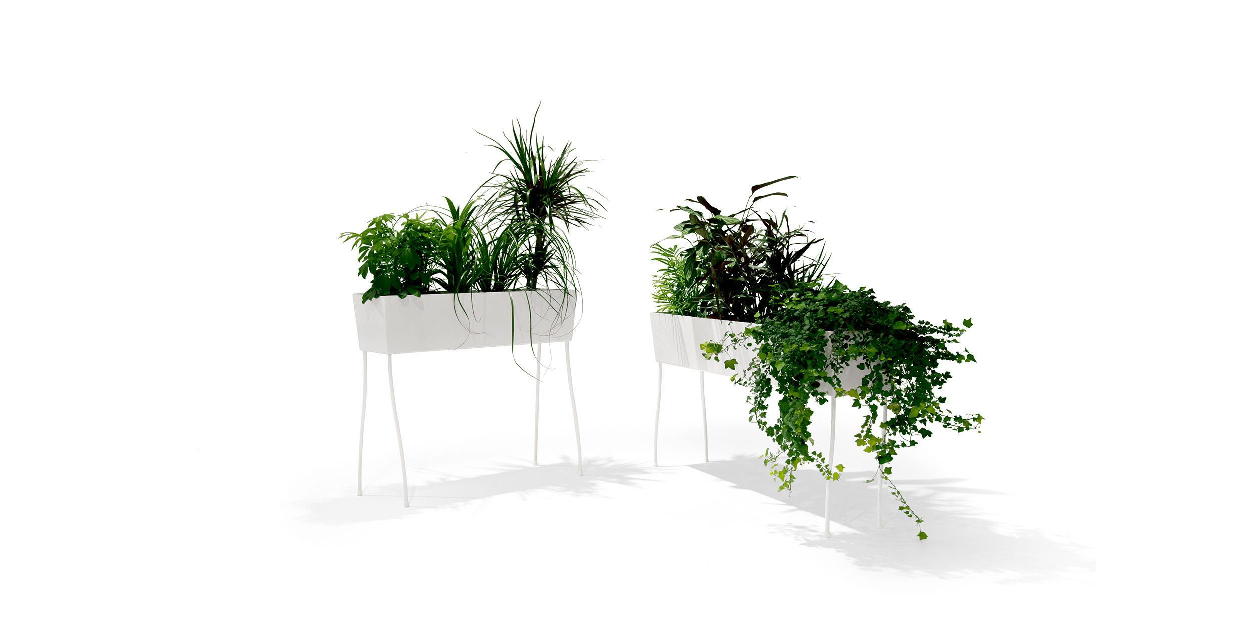 Green Pedestals, O2asis by Front