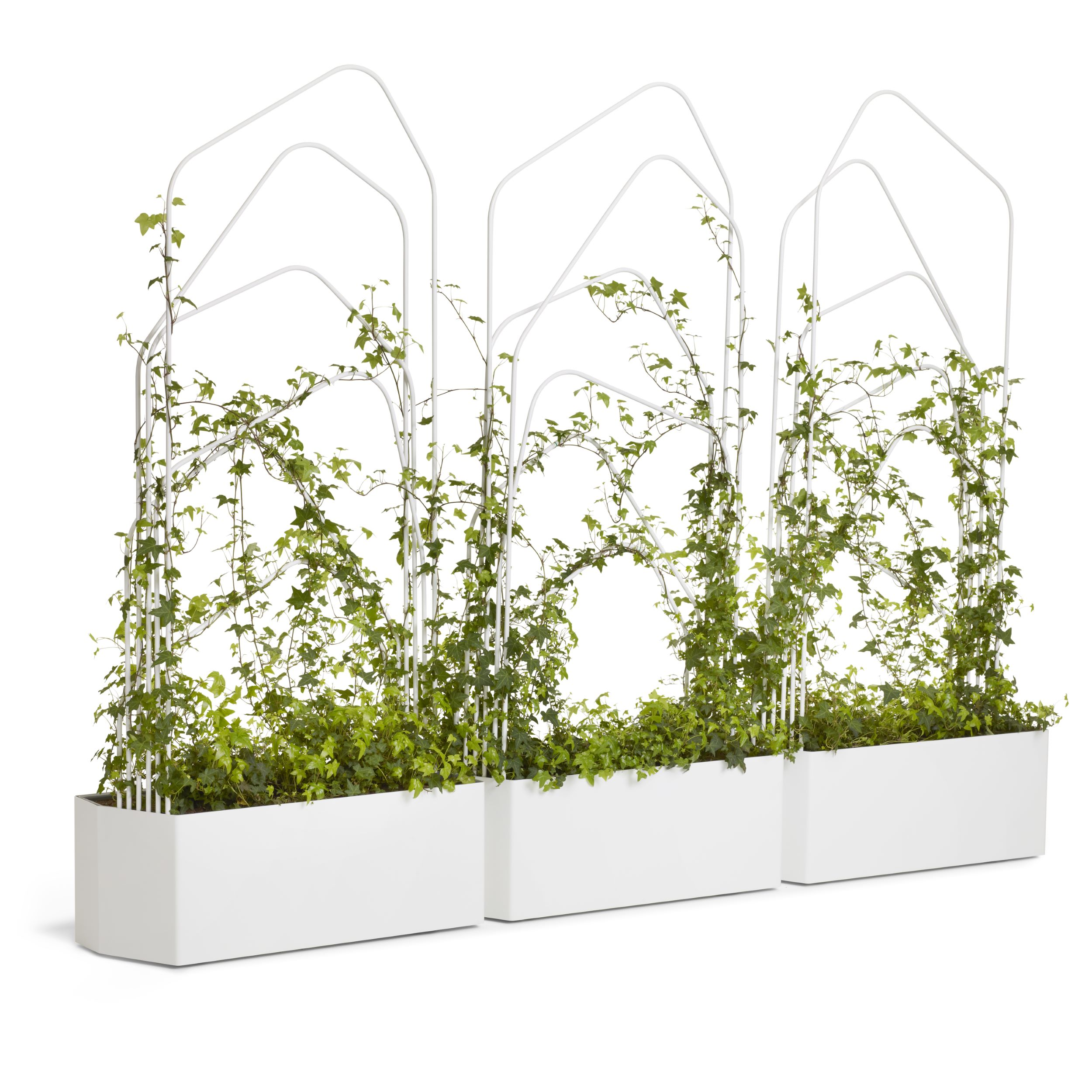Green Divider O2asis Room Separator By Louise